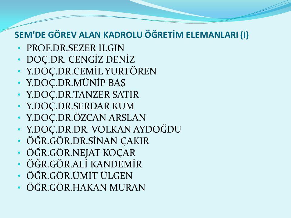 Sem'de görev alan Kadrolu Öğretİm ElemanlarI (I)