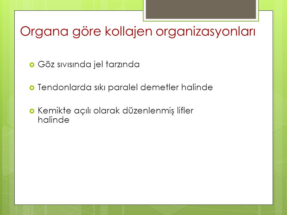 Organa göre kollajen organizasyonları