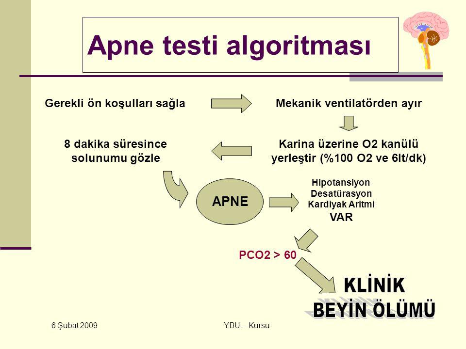 Apne testi algoritması