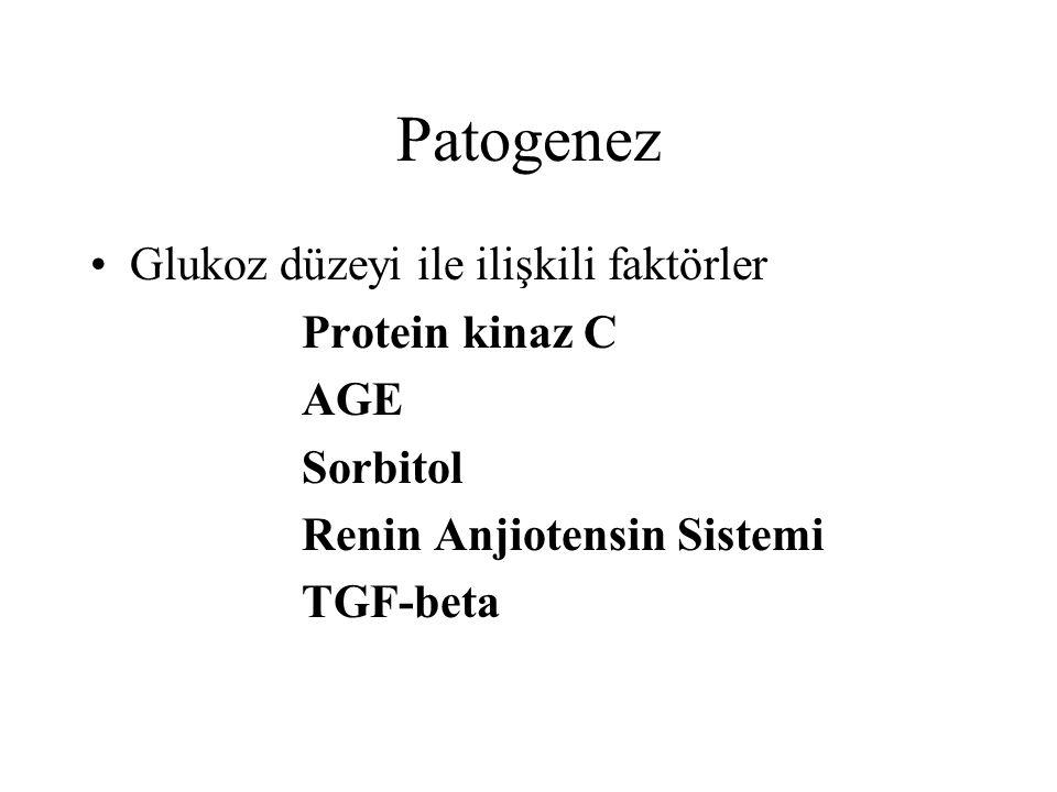 Patogenez Glukoz düzeyi ile ilişkili faktörler Protein kinaz C AGE