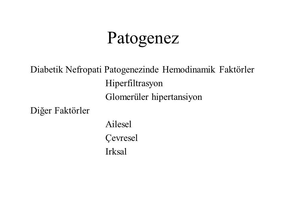 Patogenez Diabetik Nefropati Patogenezinde Hemodinamik Faktörler