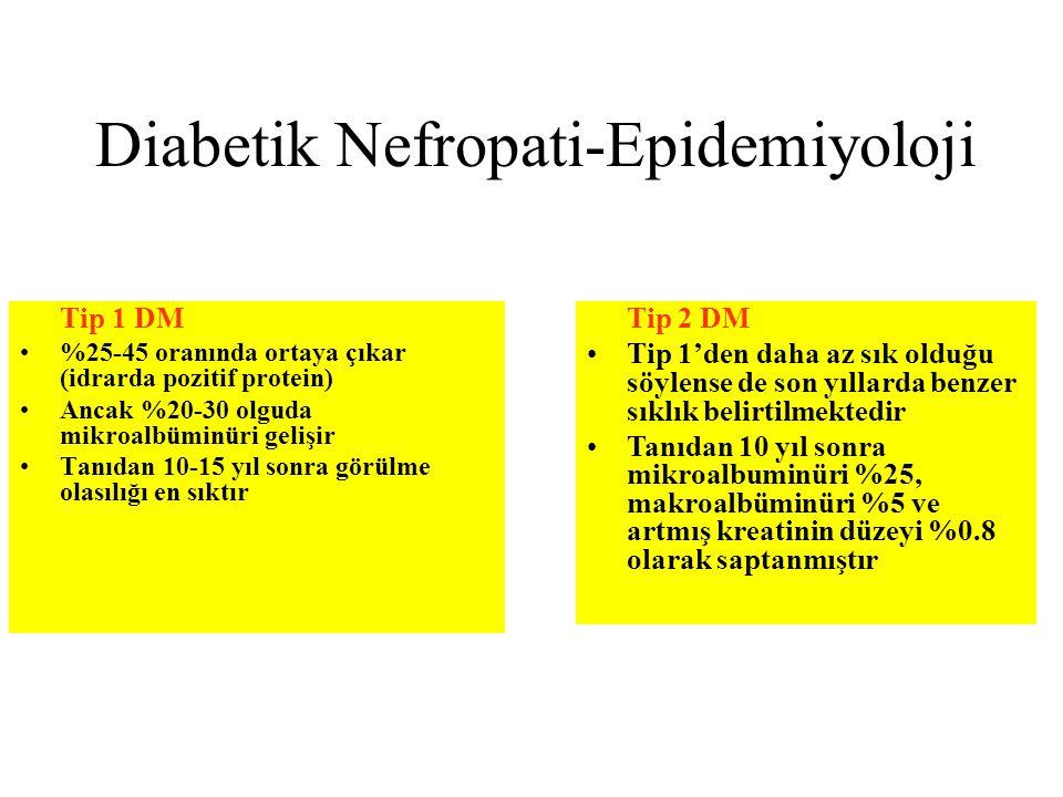 Diabetik Nefropati-Epidemiyoloji