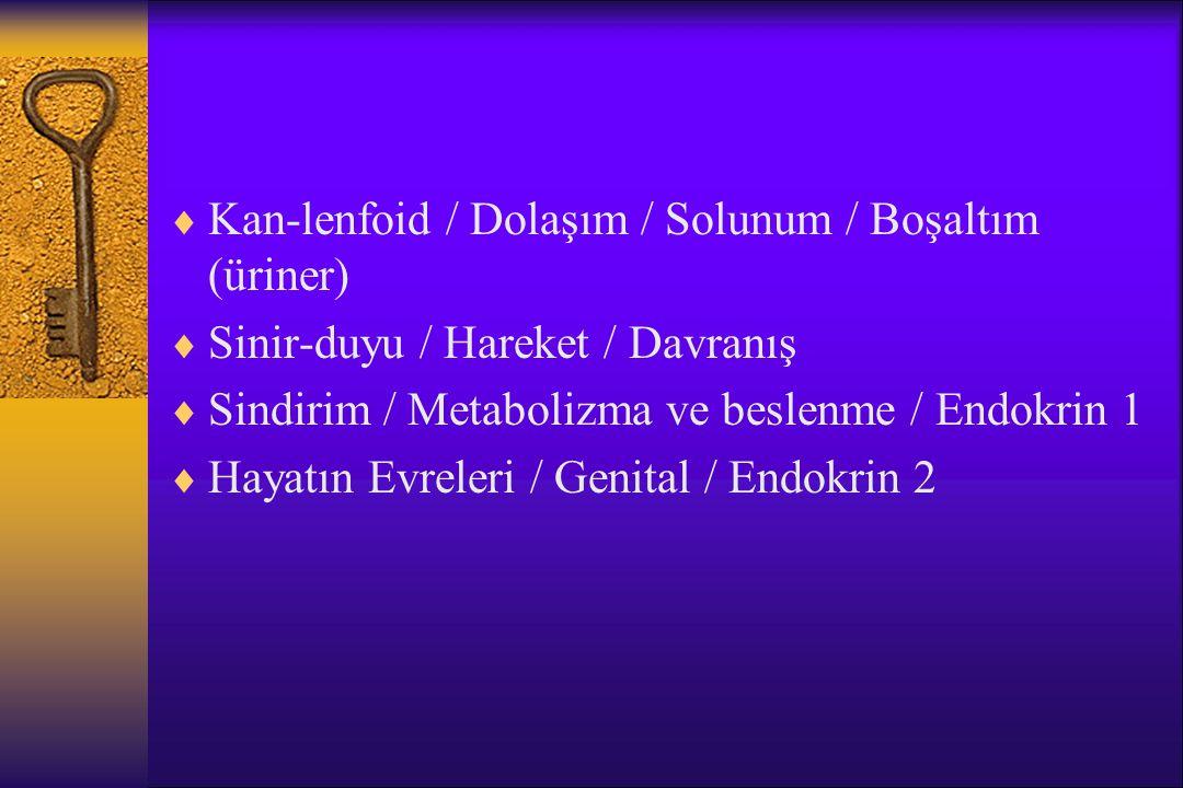Kan-lenfoid / Dolaşım / Solunum / Boşaltım (üriner)