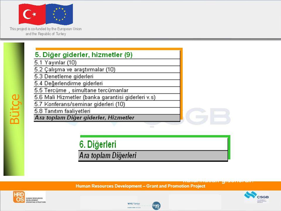 Bütçe Bütçe Diğer Giderler,Hizmetler: Proje uygulaması