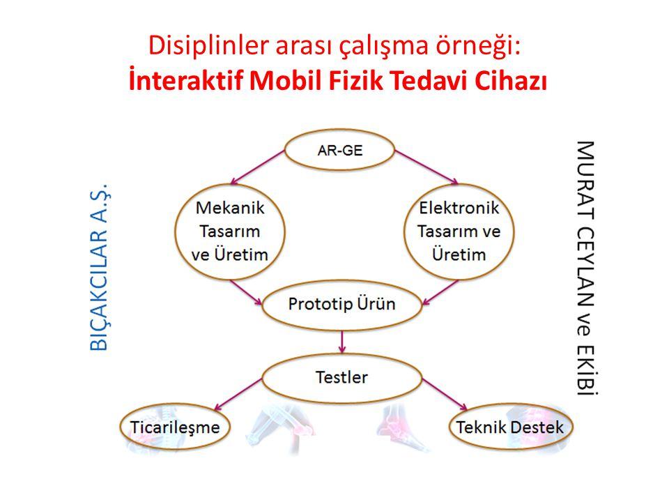 Disiplinler arası çalışma örneği: İnteraktif Mobil Fizik Tedavi Cihazı