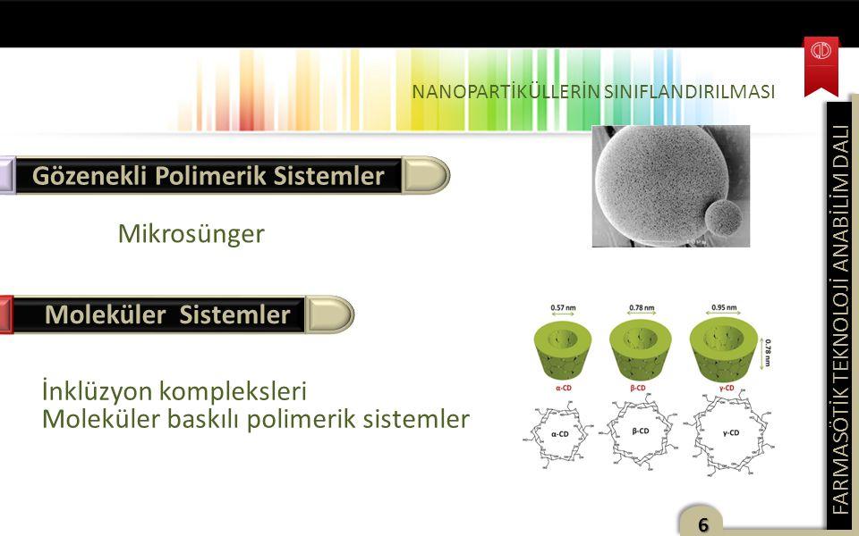 Gözenekli Polimerik Sistemler
