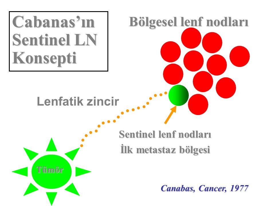 Cabanas'ın Sentinel LN Konsepti