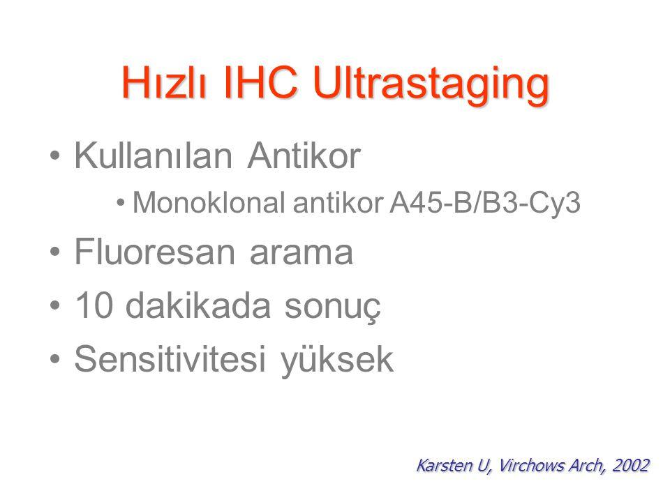 Hızlı IHC Ultrastaging