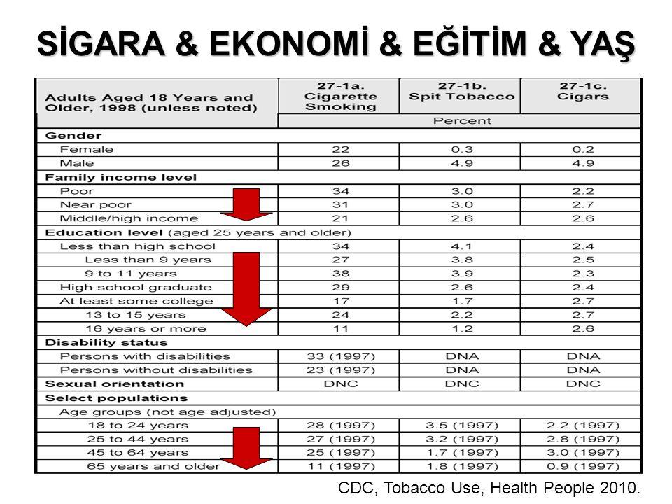 SİGARA & EKONOMİ & EĞİTİM & YAŞ