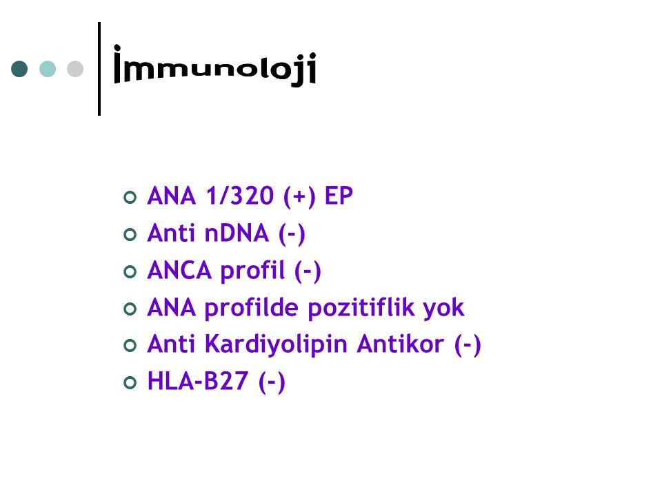 İmmunoloji ANA 1/320 (+) EP Anti nDNA (-) ANCA profil (-)