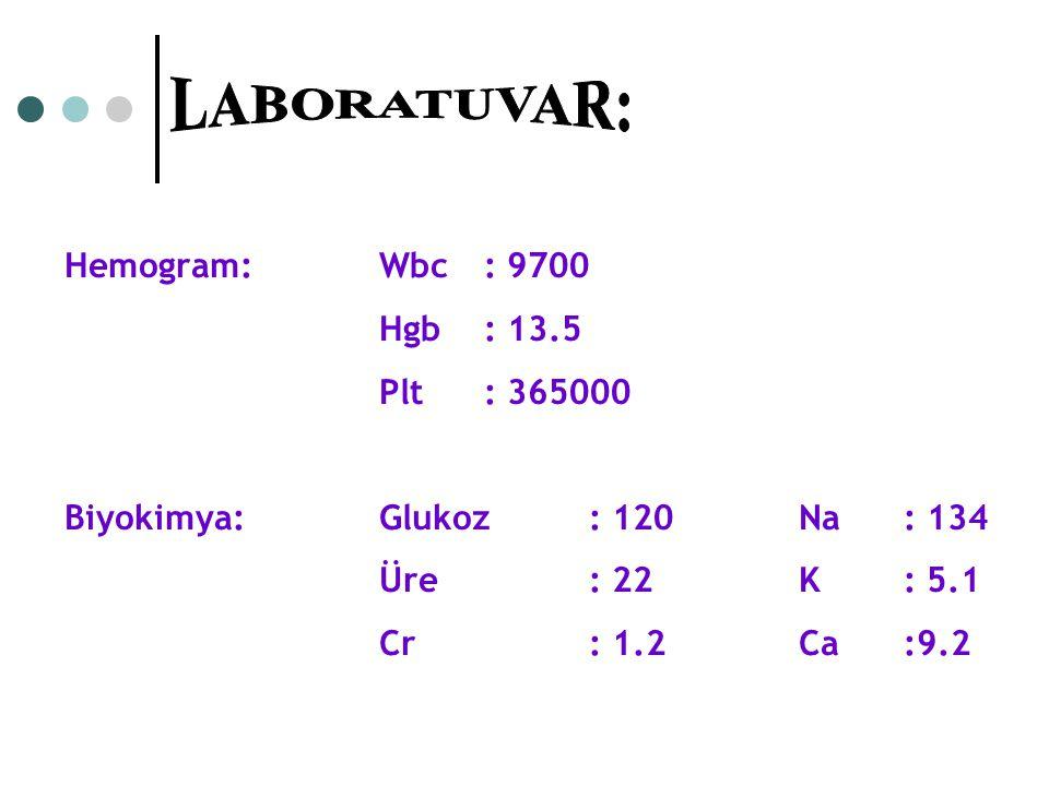 LABORATUVAR: Hemogram: Wbc : 9700 Hgb : 13.5 Plt : 365000