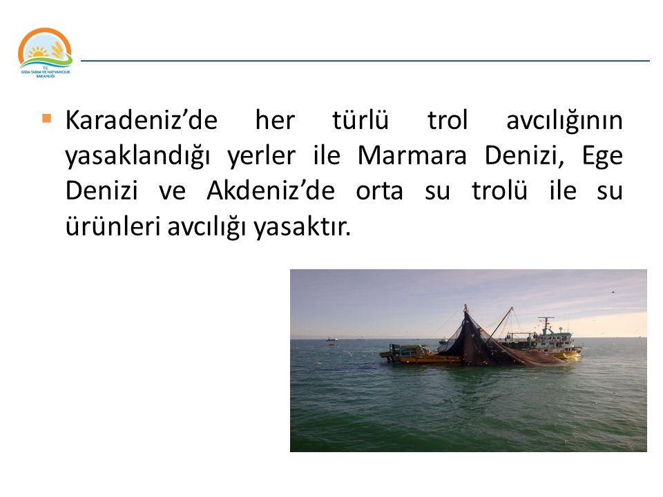Karadeniz'de her türlü trol avcılığının yasaklandığı yerler ile Marmara Denizi, Ege Denizi ve Akdeniz'de orta su trolü ile su ürünleri avcılığı yasaktır.
