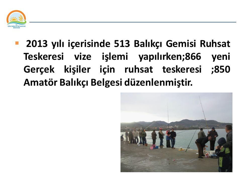 2013 yılı içerisinde 513 Balıkçı Gemisi Ruhsat Teskeresi vize işlemi yapılırken;866 yeni Gerçek kişiler için ruhsat teskeresi ;850 Amatör Balıkçı Belgesi düzenlenmiştir.