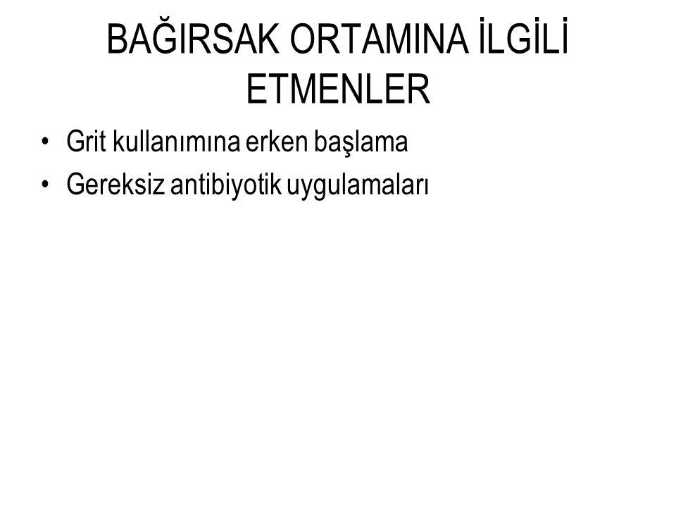 BAĞIRSAK ORTAMINA İLGİLİ ETMENLER