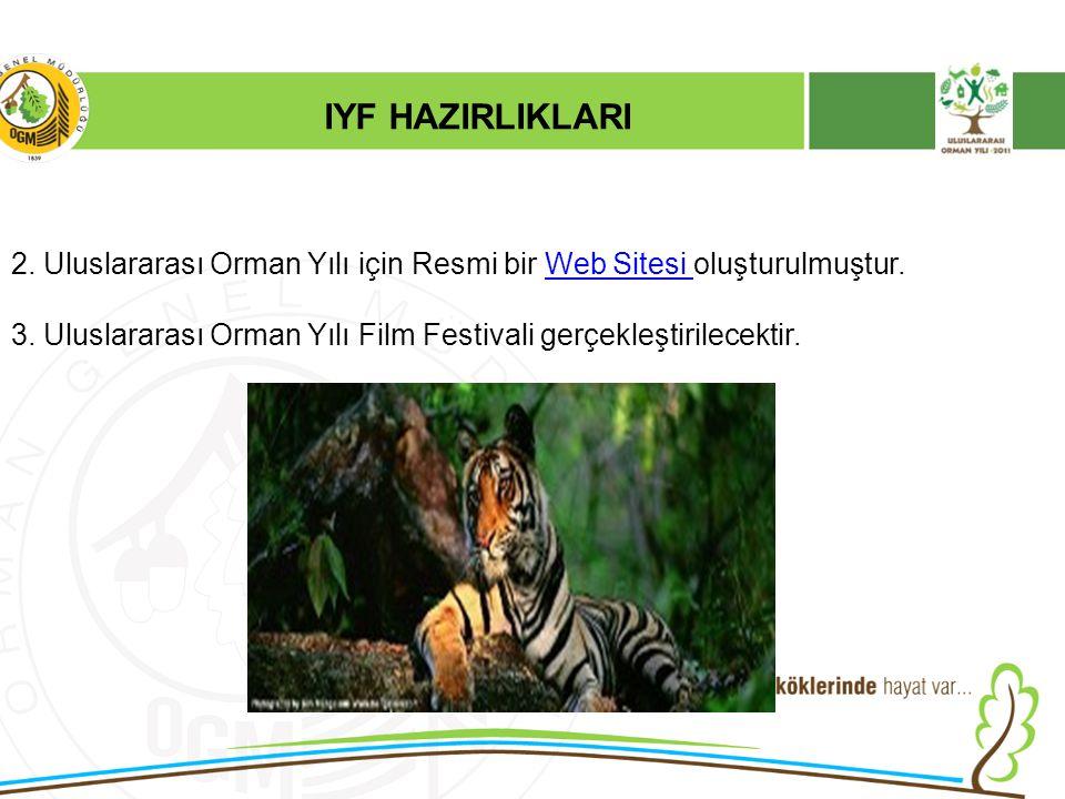 IYF HAZIRLIKLARI 2. Uluslararası Orman Yılı için Resmi bir Web Sitesi oluşturulmuştur.