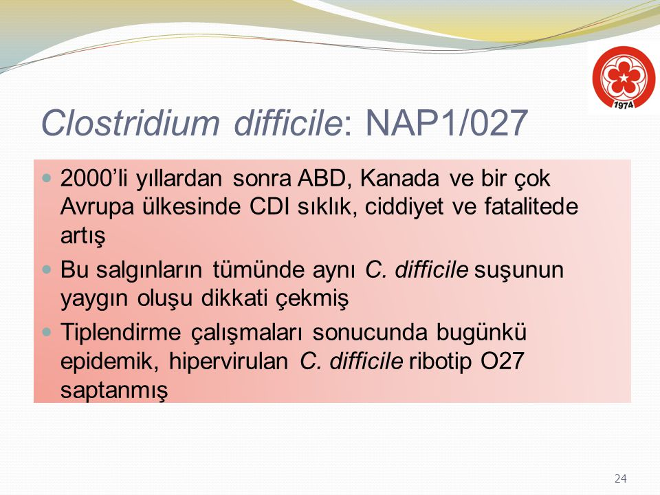 Clostridium difficile: NAP1/027