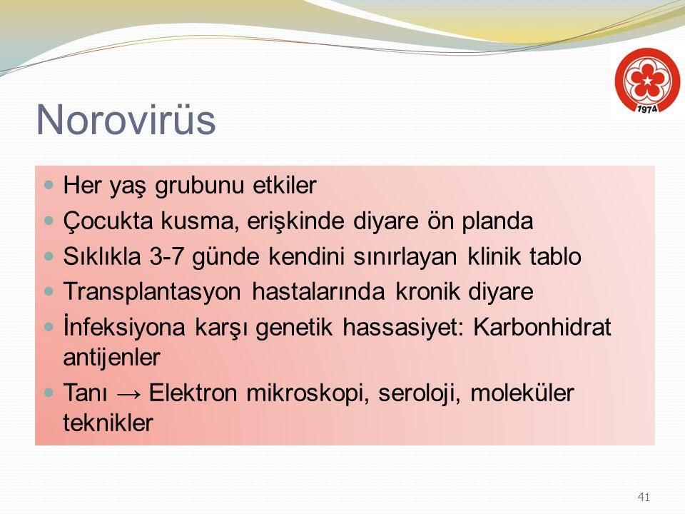 Norovirüs Her yaş grubunu etkiler