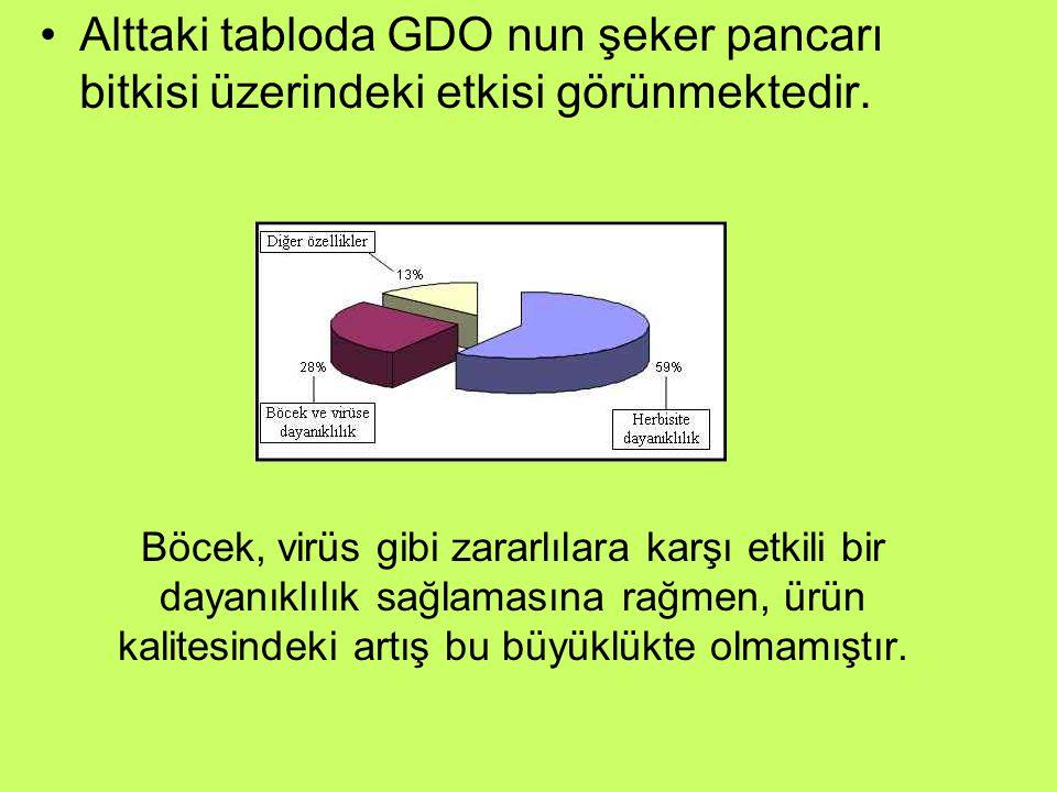 Alttaki tabloda GDO nun şeker pancarı bitkisi üzerindeki etkisi görünmektedir.