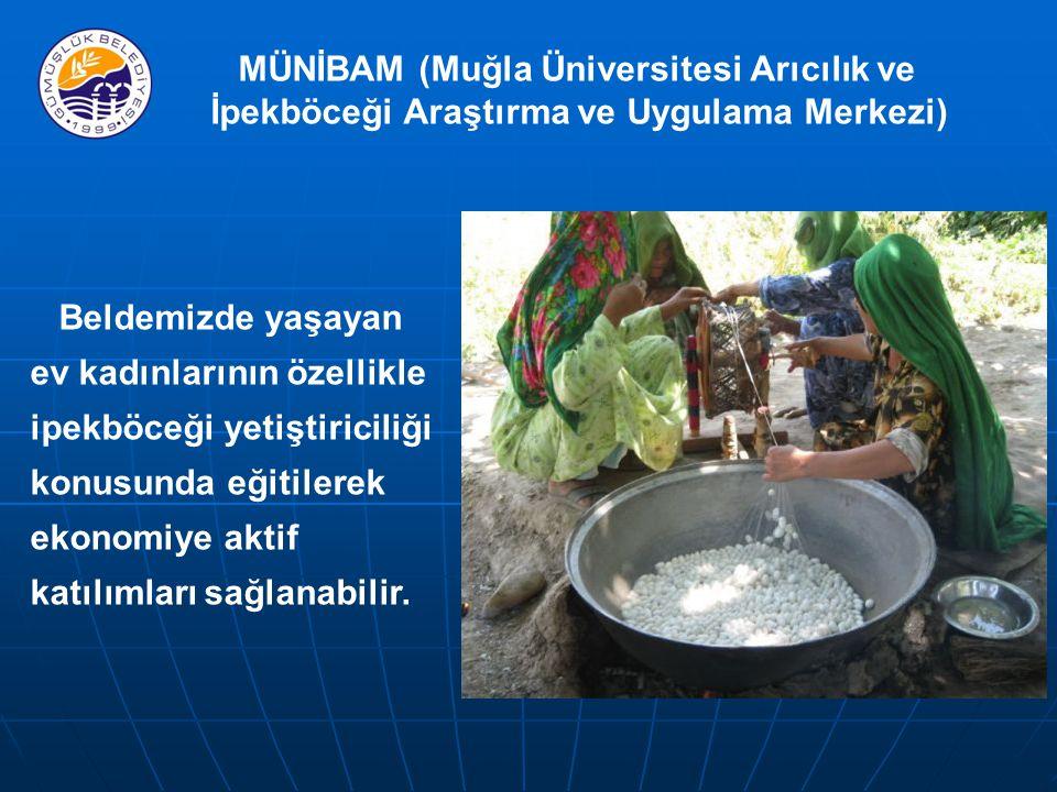 MÜNİBAM (Muğla Üniversitesi Arıcılık ve