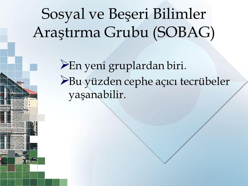 Sosyal ve Beşeri Bilimler Araştırma Grubu (SOBAG)