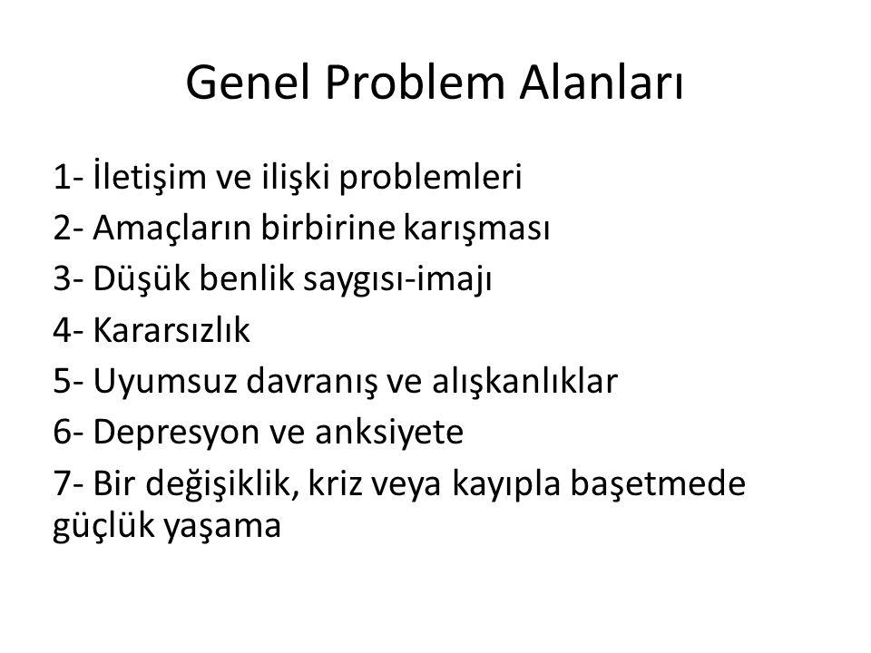 Genel Problem Alanları