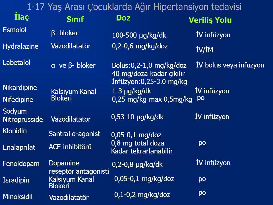 1-17 Yaş Arası Çocuklarda Ağır Hipertansiyon tedavisi