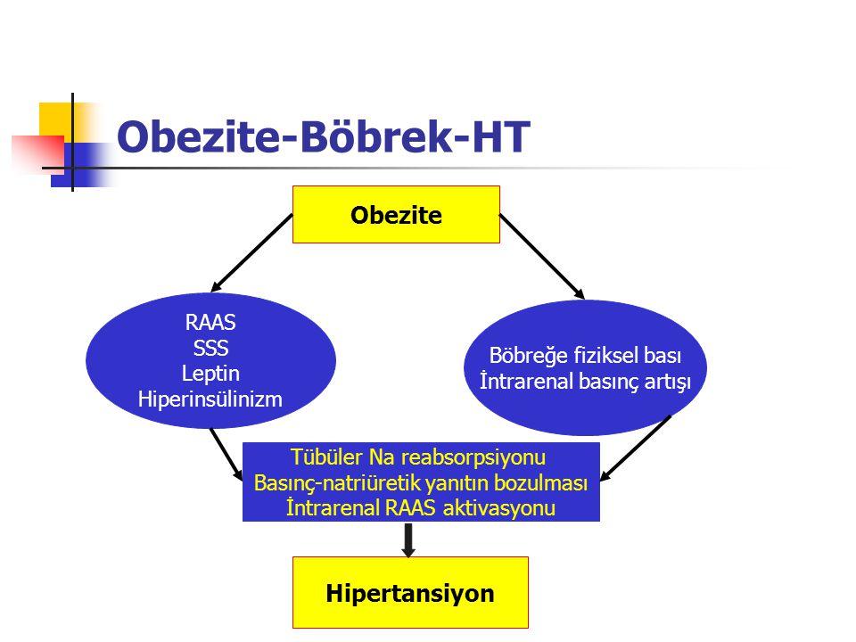 Obezite-Böbrek-HT Obezite Hipertansiyon RAAS SSS Böbreğe fiziksel bası