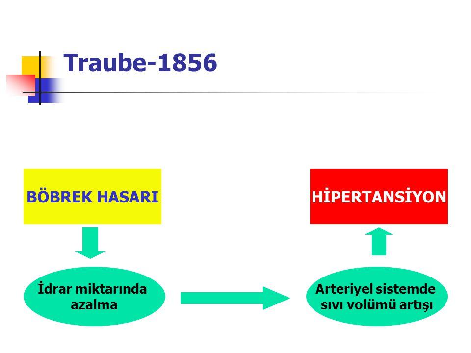 Traube-1856 BÖBREK HASARI HİPERTANSİYON İdrar miktarında azalma
