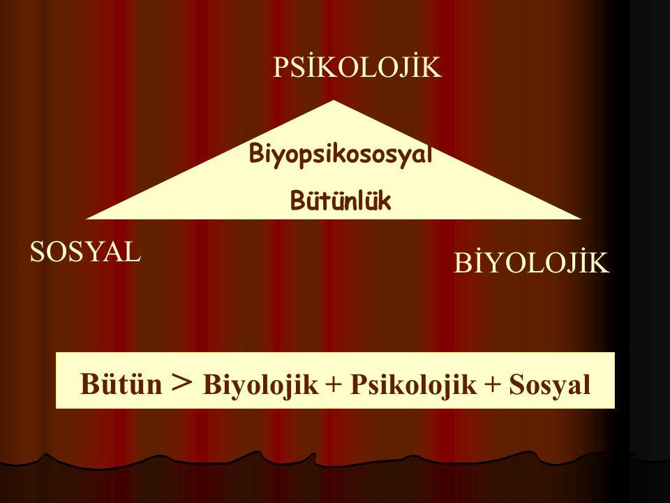 Bütün > Biyolojik + Psikolojik + Sosyal