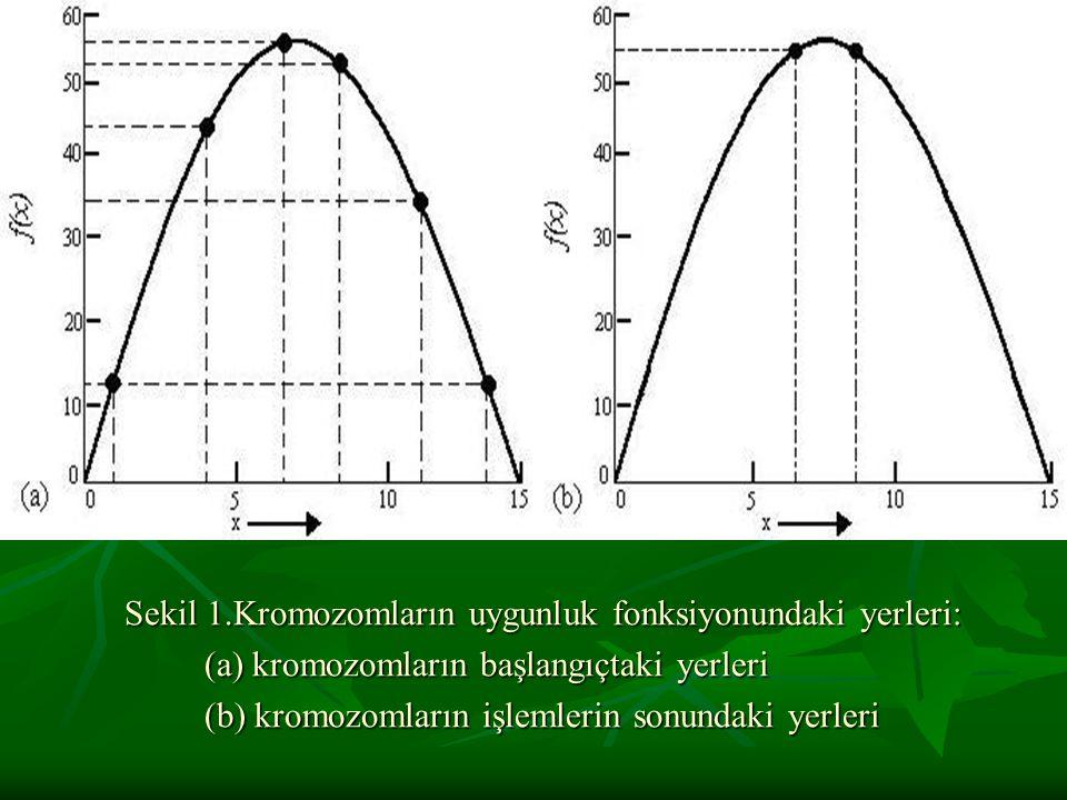 Sekil 1.Kromozomların uygunluk fonksiyonundaki yerleri: