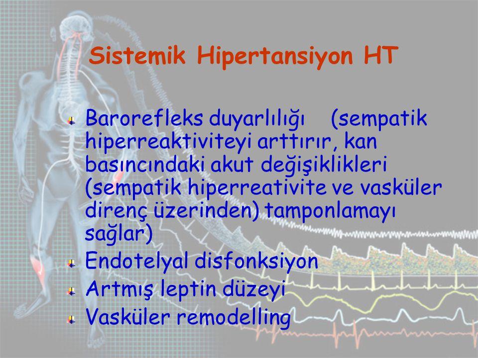 Sistemik Hipertansiyon HT