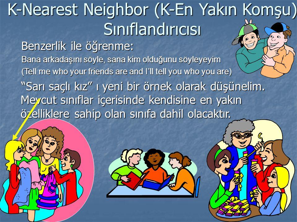 K-Nearest Neighbor (K-En Yakın Komşu) Sınıflandırıcısı