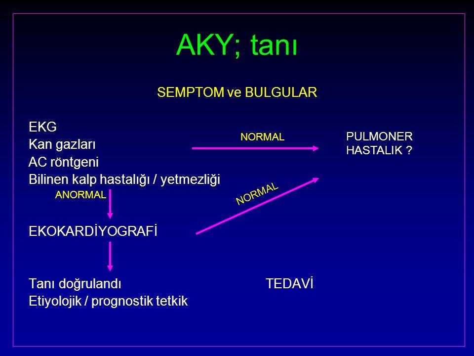 AKY; tanı SEMPTOM ve BULGULAR EKG Kan gazları AC röntgeni