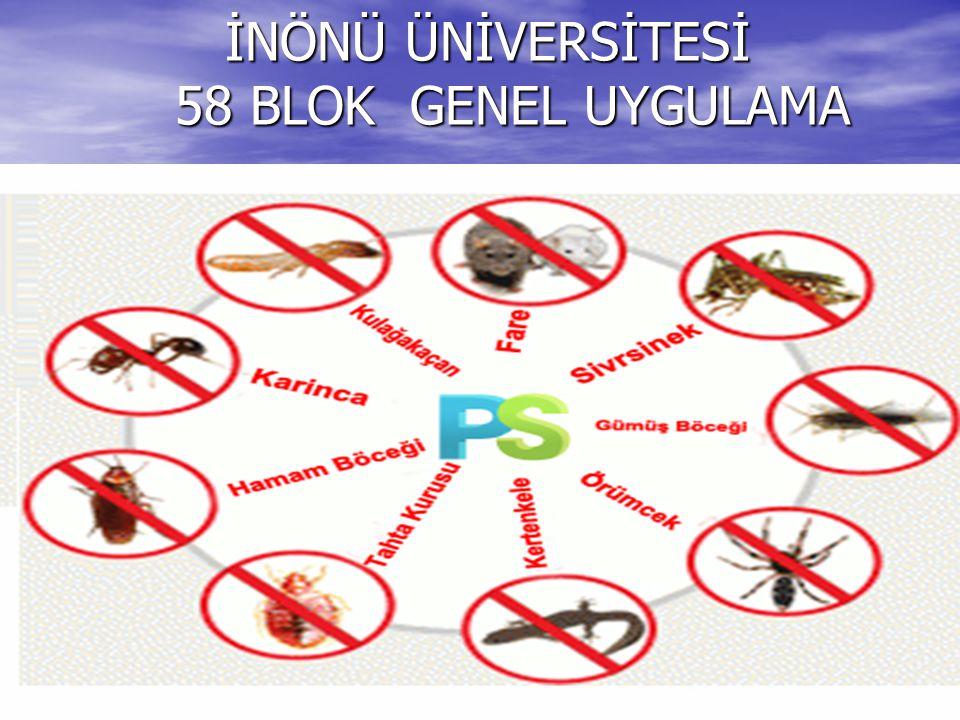 İNÖNÜ ÜNİVERSİTESİ 58 BLOK GENEL UYGULAMA