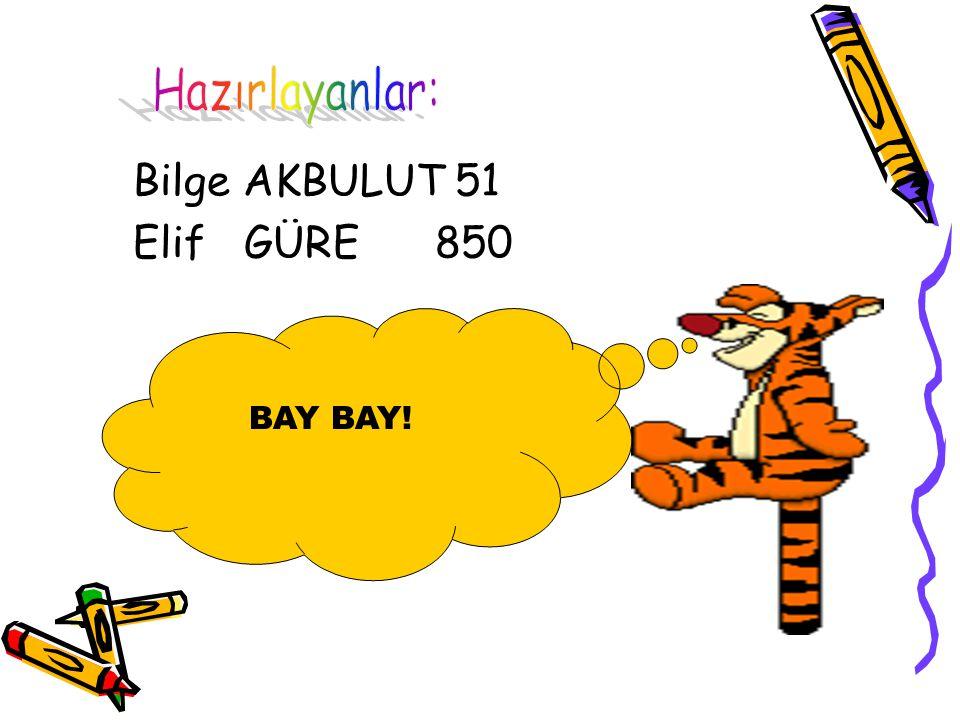 Bilge AKBULUT 51 Elif GÜRE 850 Hazırlayanlar: BAY BAY!