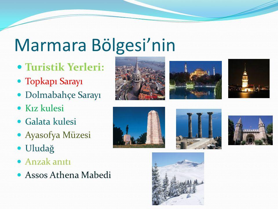 Marmara Bölgesi'nin Turistik Yerleri: Topkapı Sarayı Dolmabahçe Sarayı