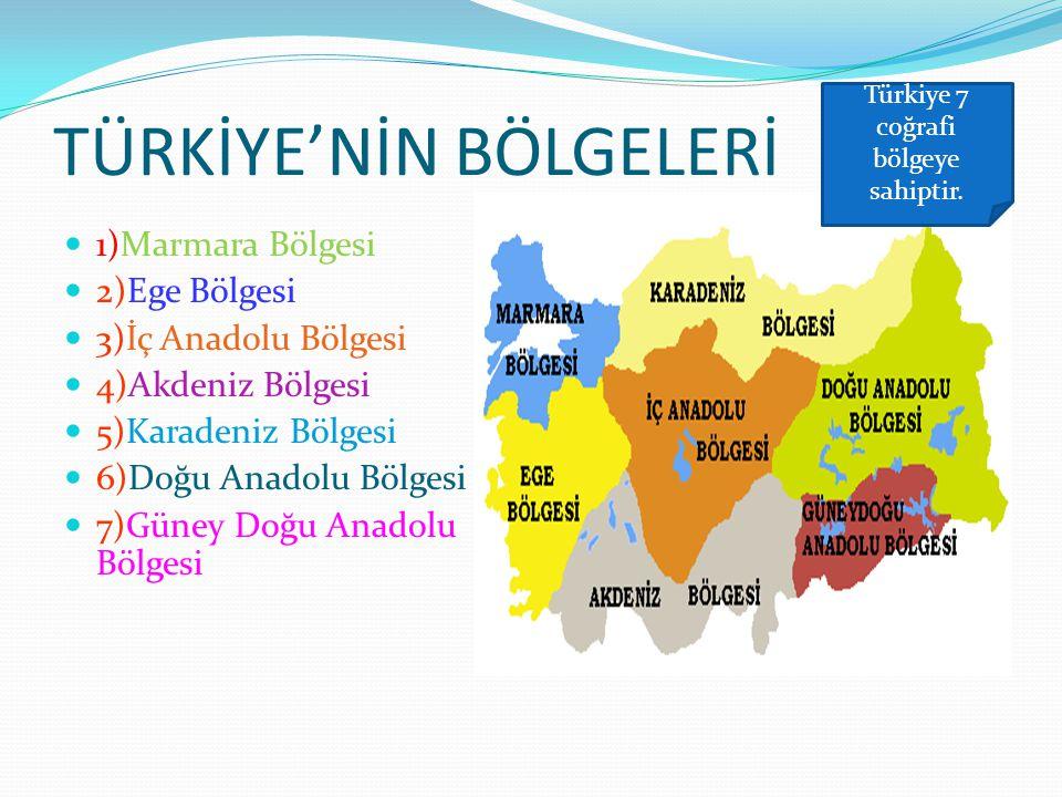 TÜRKİYE'NİN BÖLGELERİ