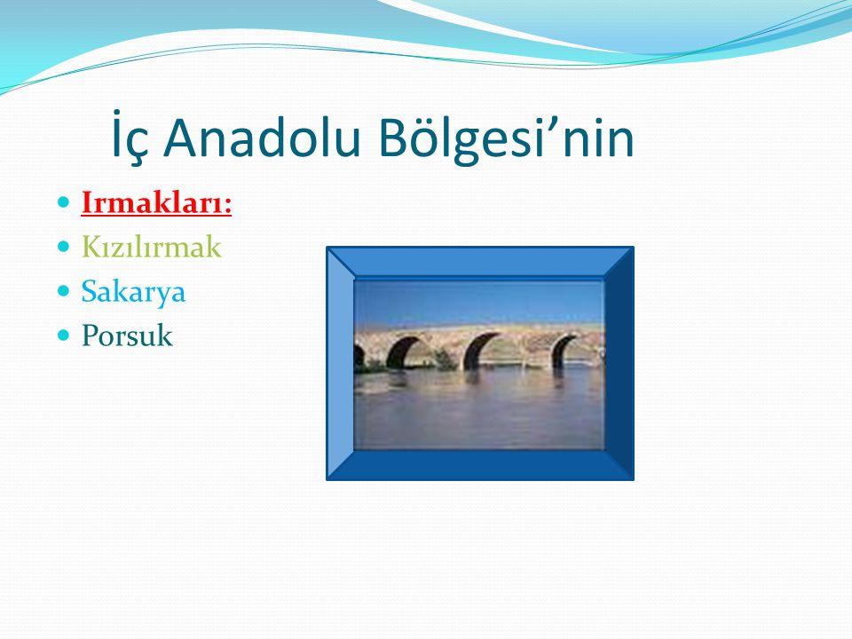 İç Anadolu Bölgesi'nin