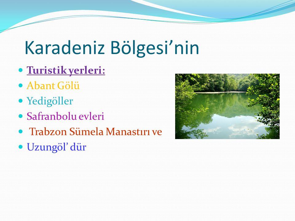 Karadeniz Bölgesi'nin