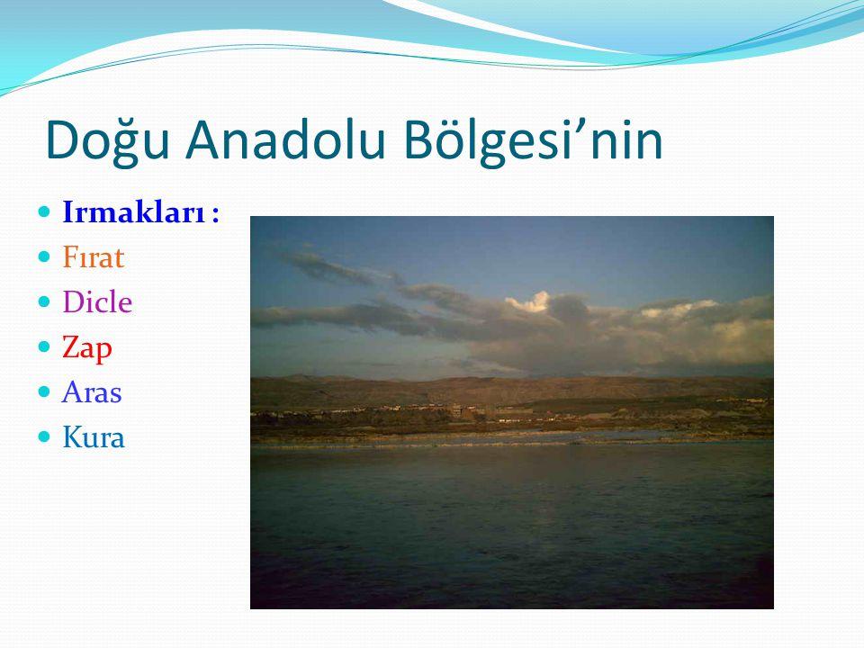 Doğu Anadolu Bölgesi'nin