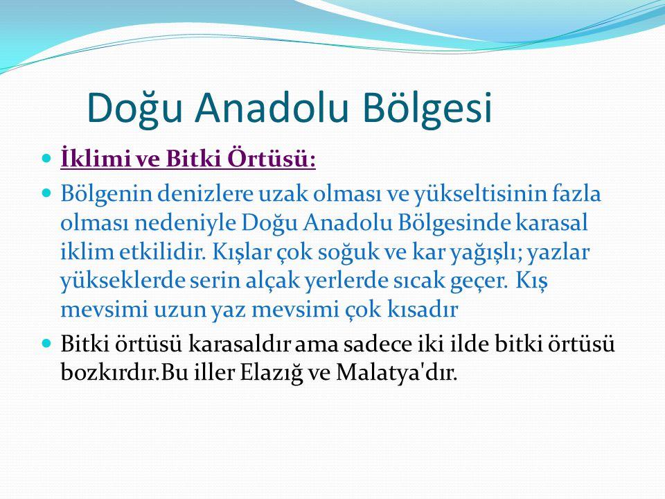 Doğu Anadolu Bölgesi İklimi ve Bitki Örtüsü:
