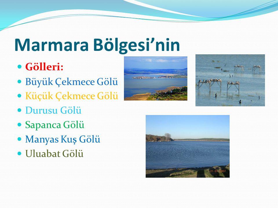 Marmara Bölgesi'nin Gölleri: Büyük Çekmece Gölü Küçük Çekmece Gölü