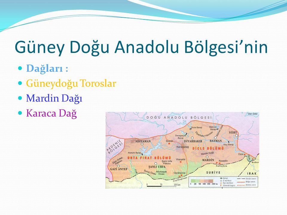 Güney Doğu Anadolu Bölgesi'nin
