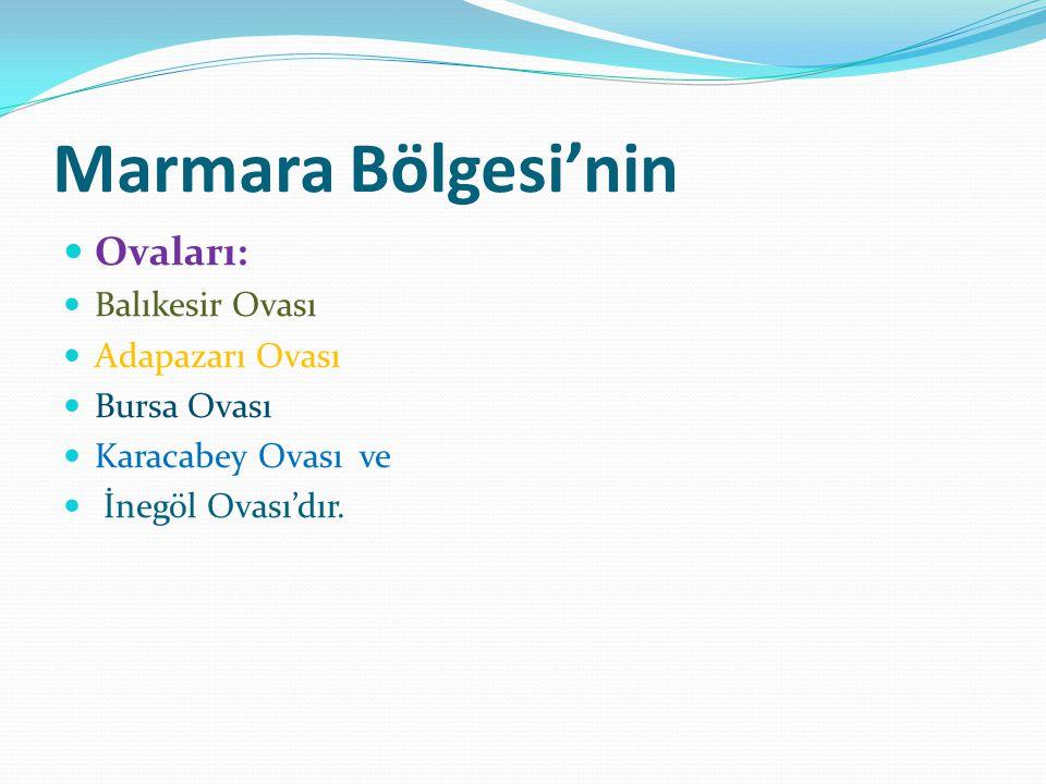 Marmara Bölgesi'nin Ovaları: Balıkesir Ovası Adapazarı Ovası