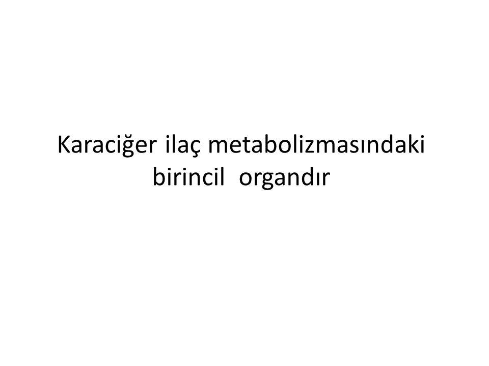 Karaciğer ilaç metabolizmasındaki birincil organdır
