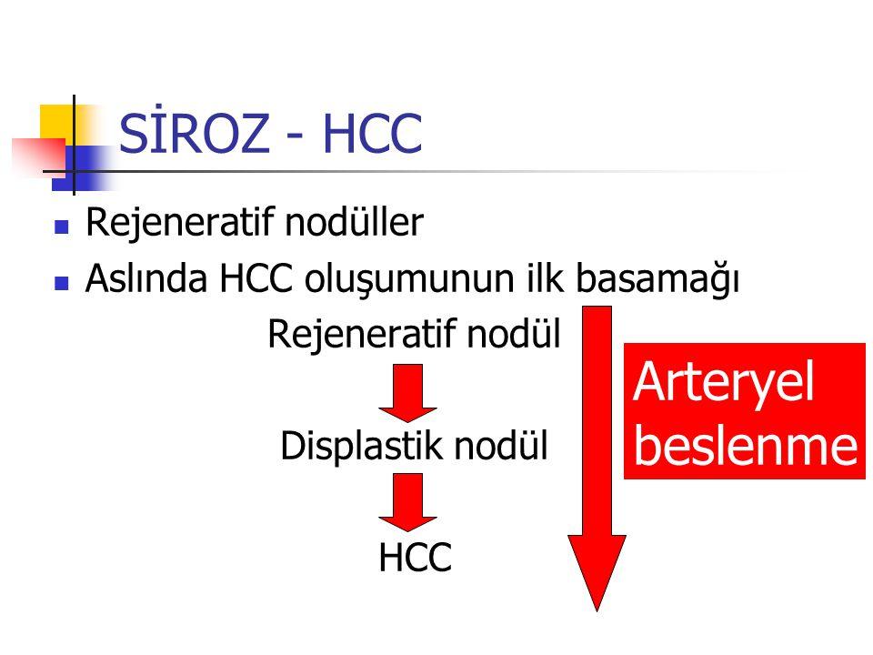 SİROZ - HCC Arteryel beslenme Rejeneratif nodüller