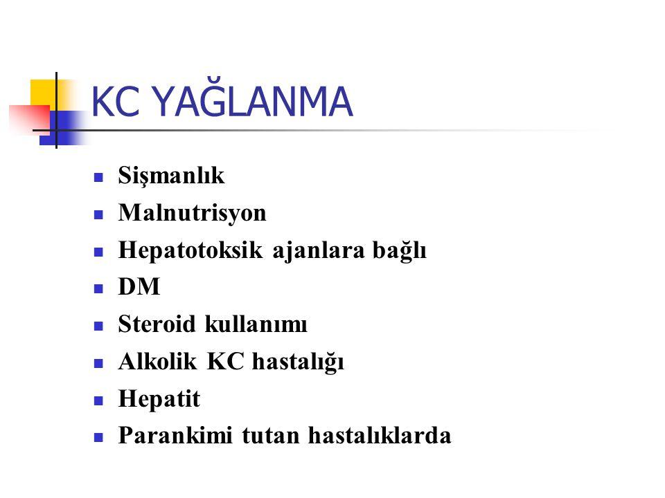 KC YAĞLANMA Sişmanlık Malnutrisyon Hepatotoksik ajanlara bağlı DM