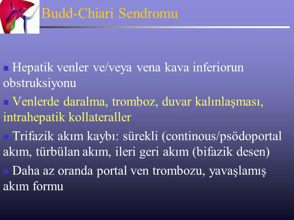 Budd-Chiari Sendromu Hepatik venler ve/veya vena kava inferiorun obstruksiyonu.