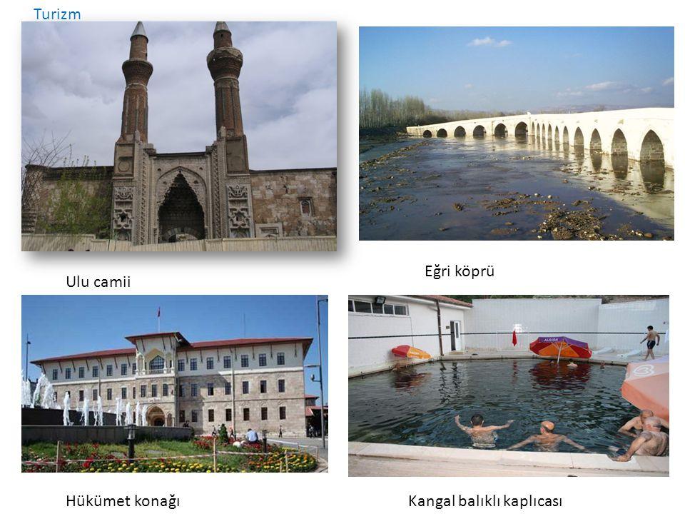 Turizm Eğri köprü Ulu camii Hükümet konağı Kangal balıklı kaplıcası