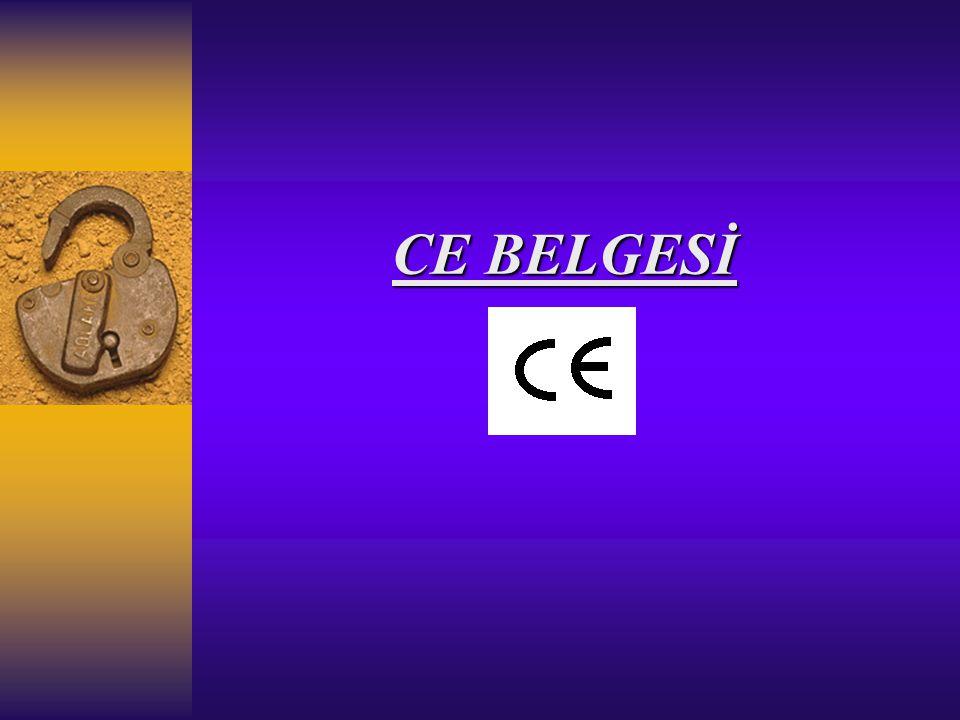 CE BELGESİ